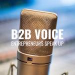 B2B Voice Team